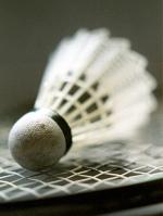 Badmintonball auf Schläger