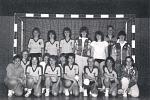 Handball alt 2